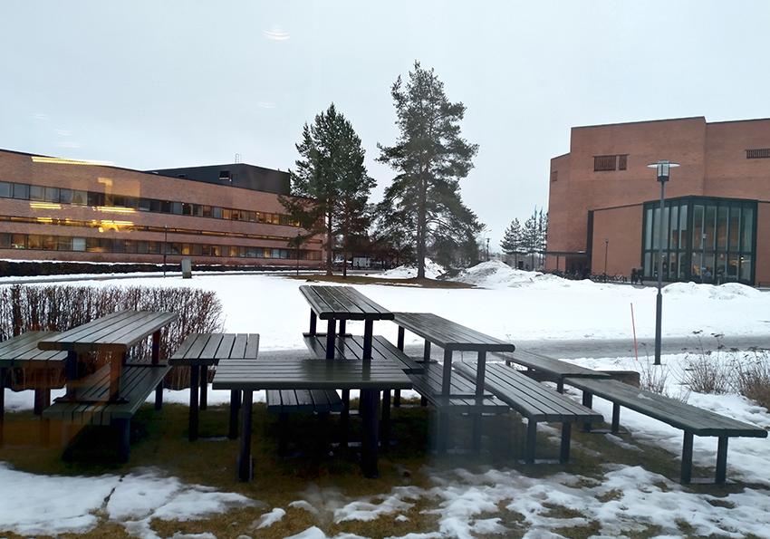 Winter landscape in Joensuu university area